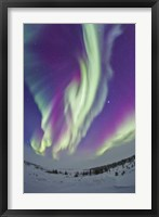 Framed Northern Lights in Churchill, Manitoba, Canada