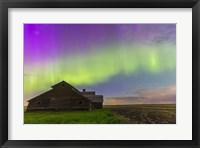 Framed Purple Aurora over an old barn, Alberta, Canada