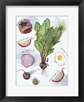 Food Sketches II Framed Print