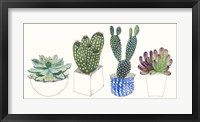 Four Succulents II Framed Print