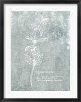 Framed Essential Botanicals III