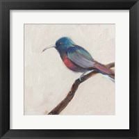 Framed Bird Profile I