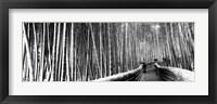 Framed Stepped walkway passing through a bamboo forest, Arashiyama, Kyoto, Japan