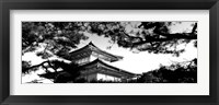 Framed Low angle view of trees in front of a temple, Kinkaku-ji Temple, Kyoto City, Japan