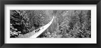 Framed Capilano Bridge, Suspended Walk, Vancouver, British Columbia, Canada BW