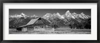Framed Old barn on a landscape, Grand Teton National Park, Wyoming