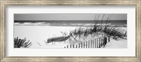 Framed Fence on the beach, Alabama, Gulf of Mexico