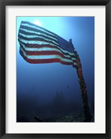 Framed American Flag on a Sunken Ship in Key Largo, Florida