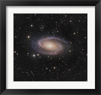 Framed Messier 81 spiral galaxy in the Constellation Ursa Major
