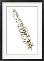 Gilded Swan Feather I Framed Print