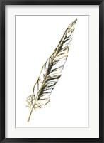 Gilded Swan Feather II Framed Print