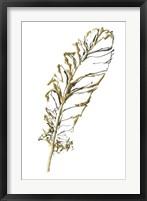 Gilded Turkey Feather I Framed Print