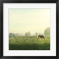 Farm Morning I Square Framed Print
