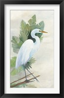 Framed Standing Egret I