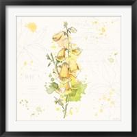Floral Splash IV Framed Print