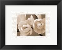 Framed Winter Magnolia II