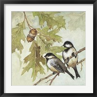 Framed Birds I