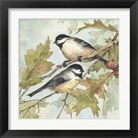Framed Birds II
