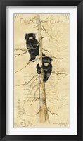 Framed Black Bears Cubs