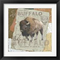 Framed Buffalo Roam