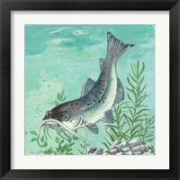 Framed Catfish