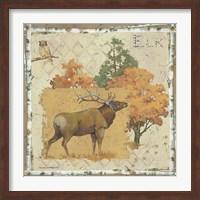 Framed Elk Country