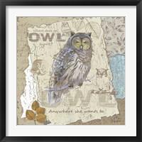 Framed Owl Hoot