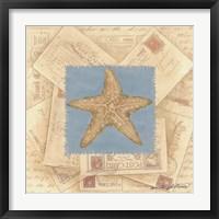 Framed Starfish Postcard I