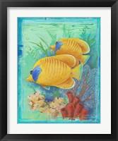 Framed Tropical Fish II (detail)
