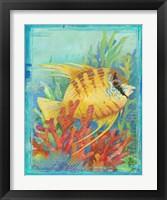 Framed Tropical Fish IV