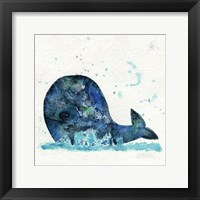 Framed Little Whale