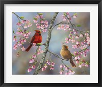 Framed Spring Cardinals