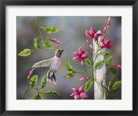 Framed Hummingbird with Flowers