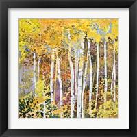 Framed Autumn Birches III