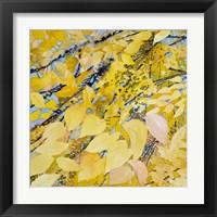 Framed Golden Leaves