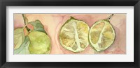Framed Limes In Sicily