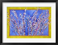 Framed Pussy Willows