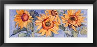 Framed Sunflowers VI