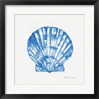 Framed Shell In Blue