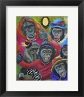 Framed Monkey Selfies
