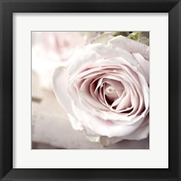 Framed Vintage Rose