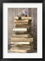 Framed Books I