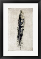 Framed Feather 3