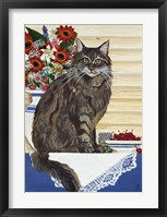 Framed Maine Coon Cat