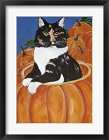 Framed Matisse In A Pumpkin