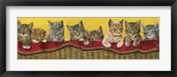 Framed Eight Kittens In Basket