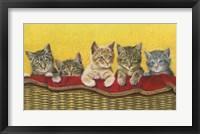 Framed Five Kittens In Basket