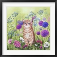 Framed Ginger Kitten In Flowers