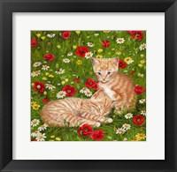 Framed Ginger Kittens In Red Poppies