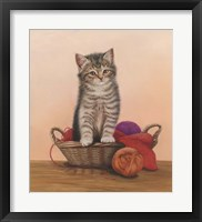 Framed Kitten And Wool Basket